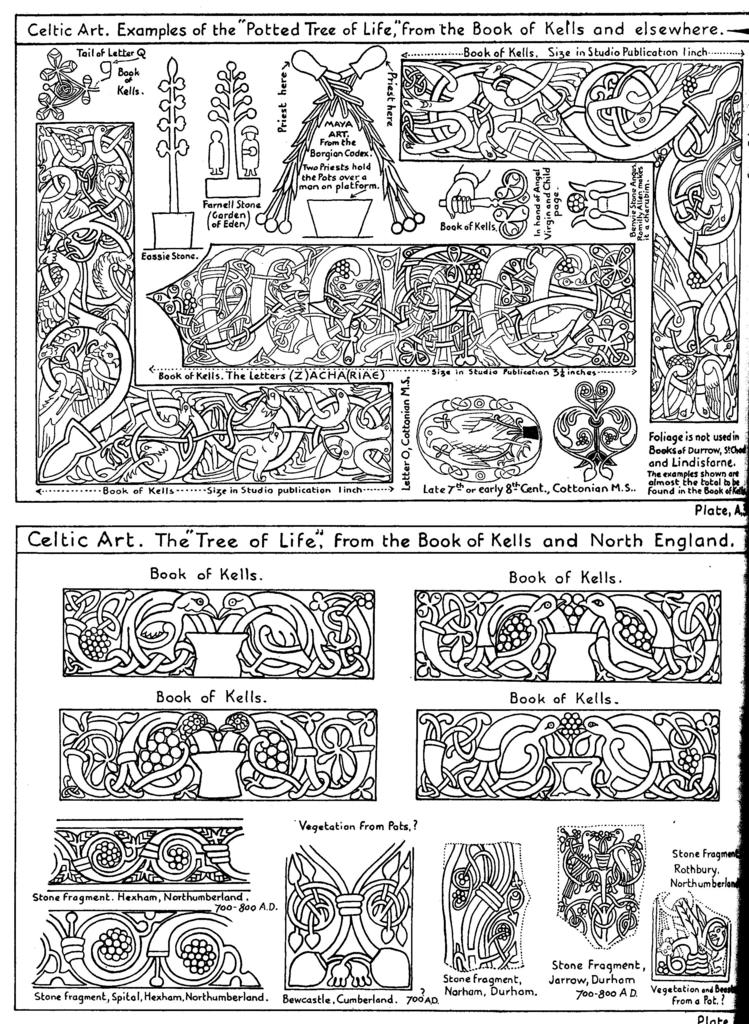 Extrait du livre de décryptage du Book of Kells dont je me suis inspiré